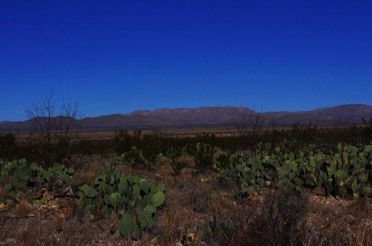 Marathon_desert